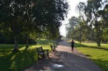 park run#